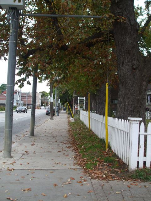The street in front of the Ashbridge Estate feels like a country road with its white picket fence